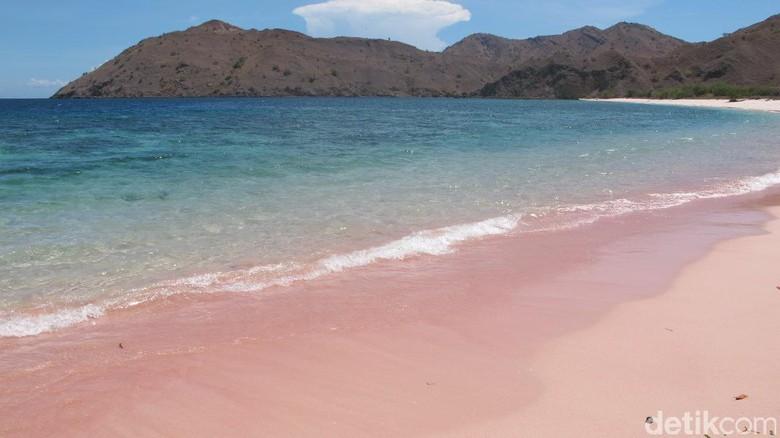 Foto: Pantai Namong, satu lagi pantai pink di Pulau Komodo, NTT (Afif/detikTravel)