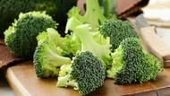 Agar Tak Mudah Kena Flu, Perkuat Daya Tahan Tubuh dengan Makanan Ini (2)