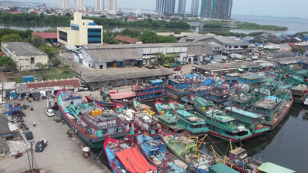 Susi Mulai Perombakan Pasar Ikan Muara Baru Siang Nanti