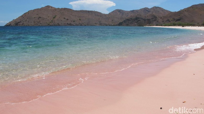 Pantai Namong  yang pasirnya berwarna pink di Pulau Komodo (Afif/detikTravel)