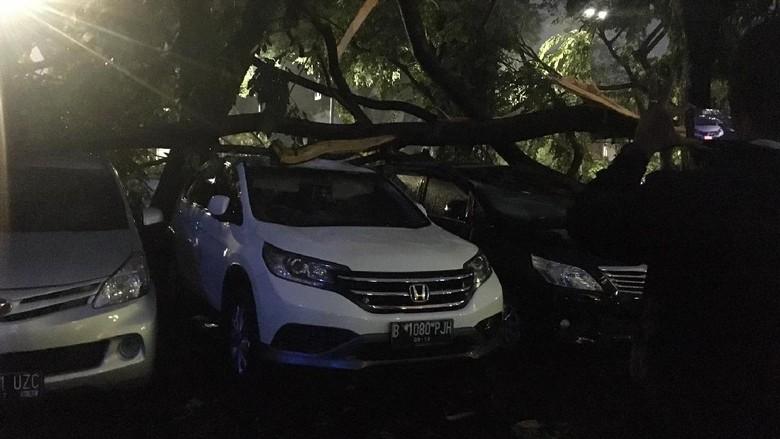 Puluhan Mobil di Gedung Panin Bank Senayan Tertimpa Pohon Tumbang