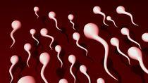 Tak Segampang Itu Bisa Hamil Gara-gara Sperma di Kolam Renang