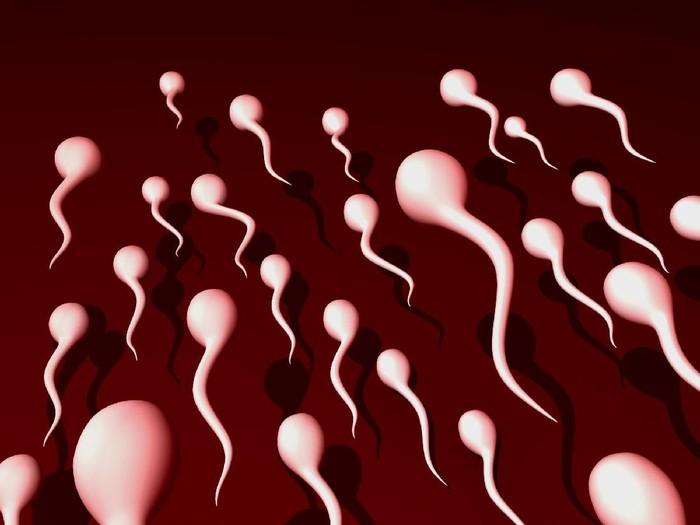 Menelan sperma ternyata juga ada manfaatnya lho. Foto: ilustrasi/thinkstock