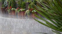 BMKG: Medan Mulai Masuk Musim Hujan, Warga Waspada Genangan