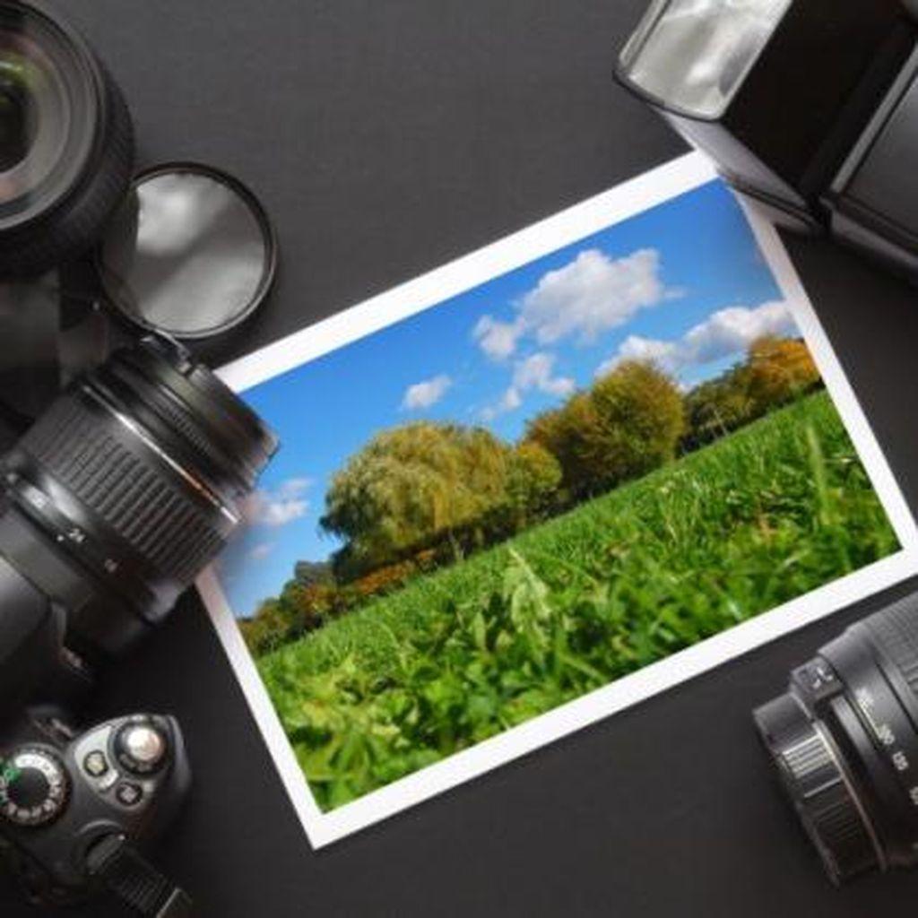 Jualan Microstock Photography, Megapixel Bukan Segalanya