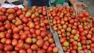 Setelah Lebaran, Harga Tomat Malah Naik Jadi Rp 24.000/Kg