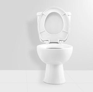 11 Benda Terlarang Dibuang ke Toilet, Akibatnya Tanggung Sendiri!