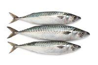 Gulai Masin, Olahan Ikan dengan Racikan Bumbu Khas Minang yang Lengkap