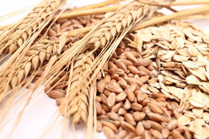 Hasil gambar untuk foto gandum utuh
