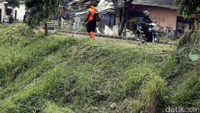 Pasukan oranye menyiangi rumput (Foto: Rengga Sancaya)