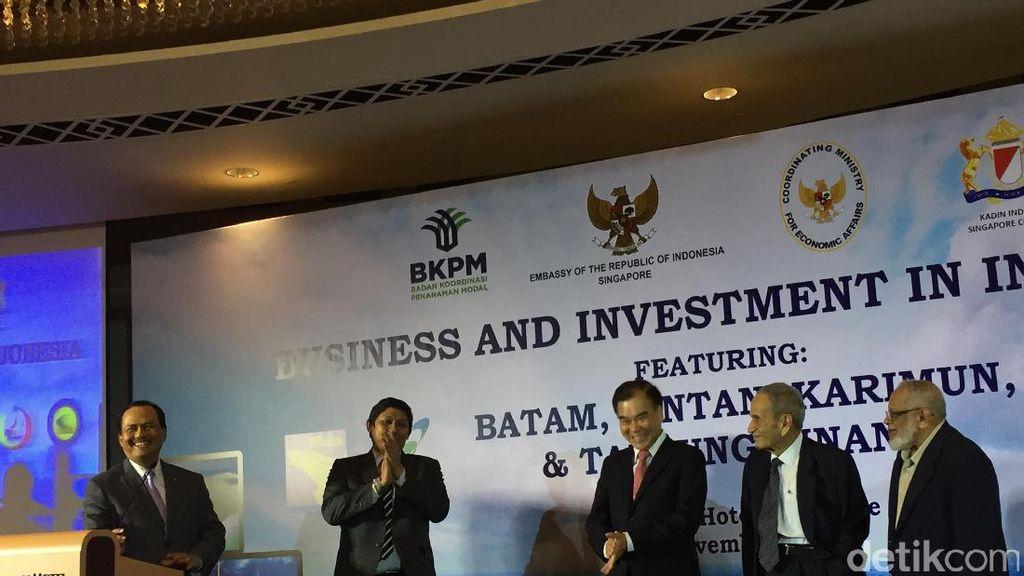 Pemerintah ke Investor Singapura: Ayo Investasi di Batam, Bintan, dan Karimun