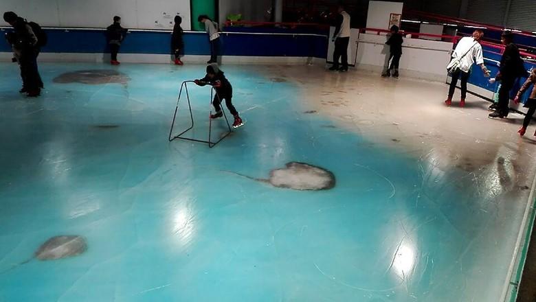 Bekukan 5 Ribu Ikan untuk Hiasan, Arena Ice Skating di Jepang Ini Ditutup