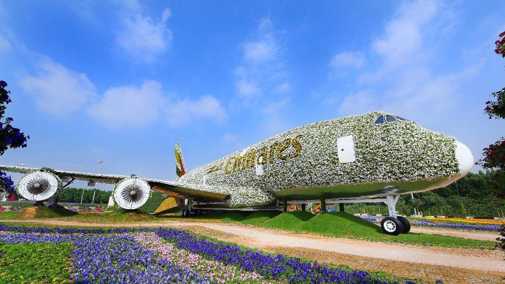 Pesawat Emirates Terbuat dari Bunga di Dubai, Cantiknya!