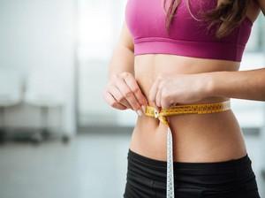 Diet Pelangsing Tubuh, Efektif Diet Rendah Lemak atau Rendah Karbohidrat?