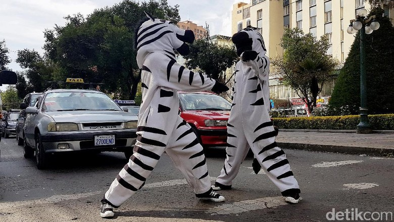 Unik, Zebra Cross di Bolivia Menyapa Pengendara