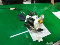 Soal Benda Mirip Bom di Ubud Bali, Polisi Buru Pencuri Tas WN Belanda