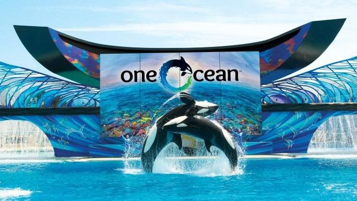 SeaWorld di Orlando, AS