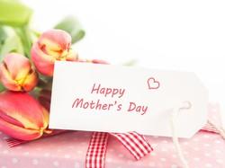 Hari Ibu, Momen Perjuangan Perempuan Indonesia