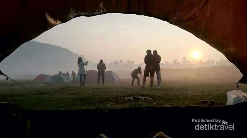 Ranca Upas di Kecamatan Rancabali, Kabupaten Bandung, Jawa Barat dikenal sebagai bumi perkemahan atau tempat favorit untuk kemping oleh para pencinta alam (Wisma Putra/detikTravel)