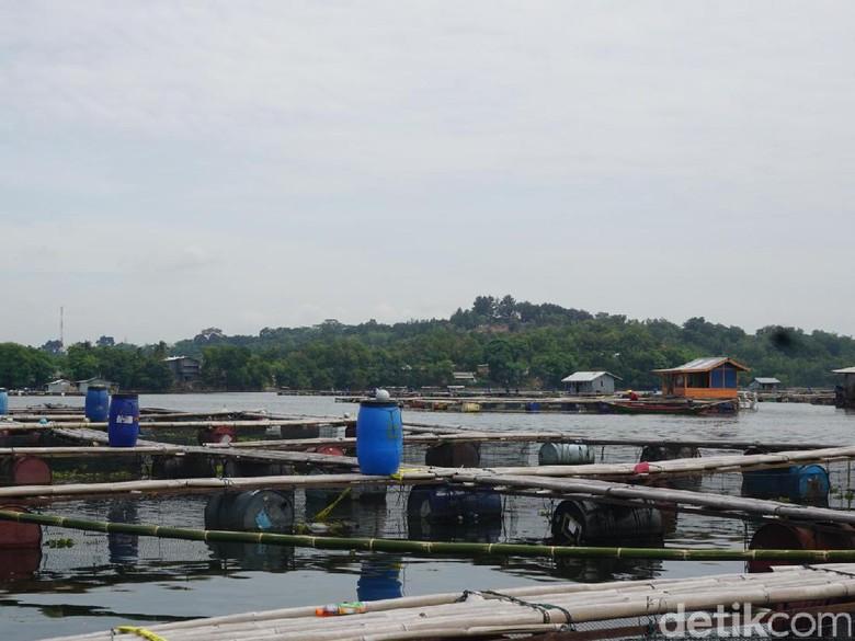 Penghuni Kolam Jaring Apung Waduk Jatiluhur Didata Polisi