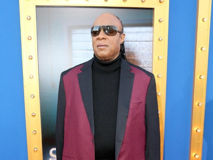 LOS ANGELES, CA - DECEMBER 03:  Musician Stevie Wonder attends the premiere Of Universal Pictures Sing on December 3, 2016 in Los Angeles, California.  (Photo by Frederick M. Brown/Getty Images)