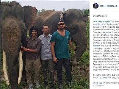 Traveling Sambil Aksi Lingkungan Ala Leonardo Dicaprio ke Aceh