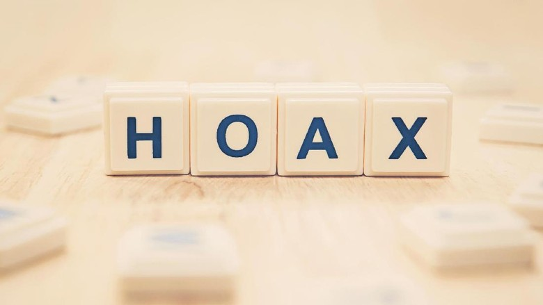 Image result for hoax