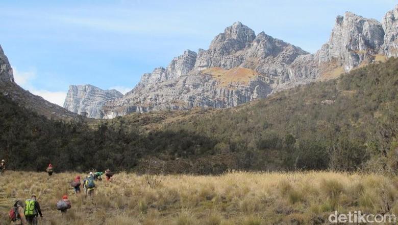 Ilustrasi gunung di Papua (Afif/detikTravel)