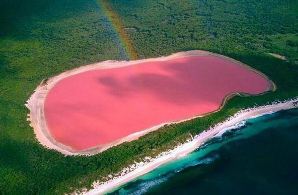 Namun, karena lokasinya yang jauh dan sulit dicapai, jadi jarang wisatawan yang benar-benar menginjakan kaki di pulau ini. Jadi otoritas setempat menyarankan wisatawan untuk menikmati keindahan danau dengan pesawat kecil. (hillierlake.com)