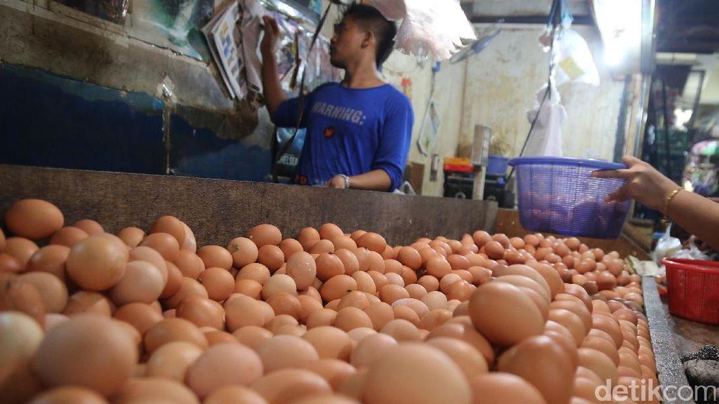 Akhir Juli Ini Harga Telur-Daging di Bandung Diprediksi Normal