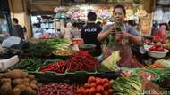 Kementan Klaim Harga Pangan Efektif Tekan Inflasi Sejak 2015