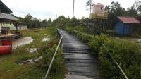 Cerita PLN Tembus Rawa Demi Melistriki Desa Terpencil di Kalteng