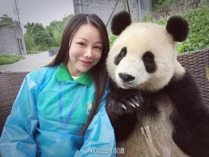 Aksi Gemas Seekor Panda Berfoto Selfie