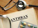 Cegah Antraks, Ratusan Hewan Ternak di Gunungkidul Disuntik Antibiotik