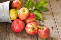 Cara Memilih Apel yang Cocok untuk 'Apple Pie' hingga Saus Apel