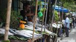 Jelang Imlek, Pedagang Ikan Bandeng Diserbu Warga