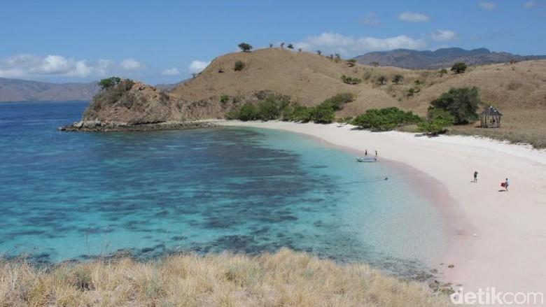 Pantai Pink di Labuan Bajo (Dadan/detikTravel)
