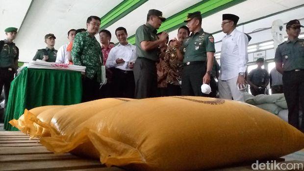 Mentan Amran Tinjau Sentra Pertanian Padi TNI AD di Jombang