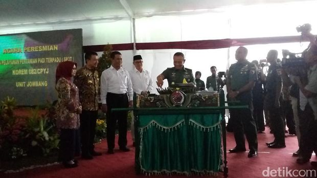 Mentan dan KSAD kunjungi sentra pertanian padi TNI AD di Jombang