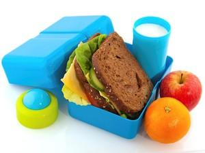 Tips Memilih Wadah Bekal Makanan Anak