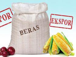 Prabowo Bingung Menteri Jokowi 'Tak Akur' soal Impor Beras