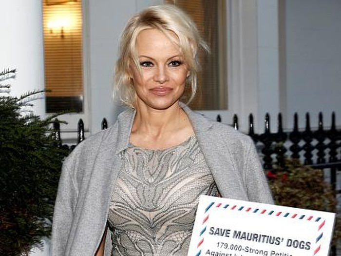 LONDON, ENGLAND - DECEMBER 12:  Pamela Anderson accompanied by rescued dog Zorro deliver a 178,000-name petition to the High Commission of Mauritius, urging the country to implement a spay-and-neuter programme to tackle its stray-dog problem at High Commission Of Mauritius on December 12, 2016 in London, England.  (Photo by John Phillips/Getty Images)