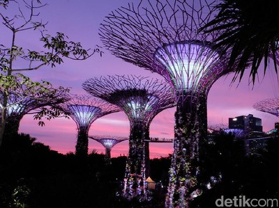 Megahnya Gardens by the Bay, Tempat Syuting Crazy Rich Asians