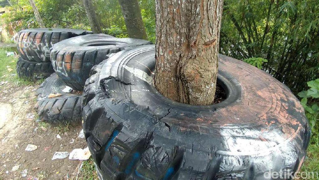 Bingung Kan? Bagaimana Ban Ini Membungkus Pohon di Purwakarta