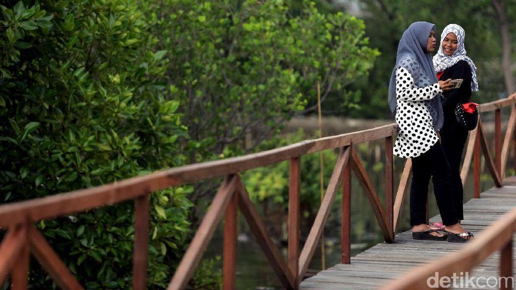 Wisata Hutan Mangrove Pal Jaya