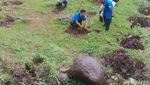 Indonesia Darurat Lahan Pangan?