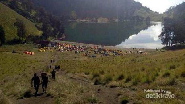 Gunung Semeru merupakan dambaan pendaki gunung di Indonesia. Di sini ada Ranu Kumbolo yang mahsyur Foto: (Gede Leo/dTraveler)