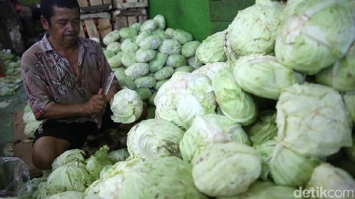 Kubis dan brokoli termasuk dalam jenis sayuran hijau yang disebut peneliti bisa melawan kanker. Rahasianya ada pada kandungan zat khusus pelindung sel. Foto: Ari Saputra