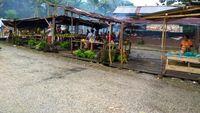 Trans Papua Menjadi Sumber Ekonomi Baru