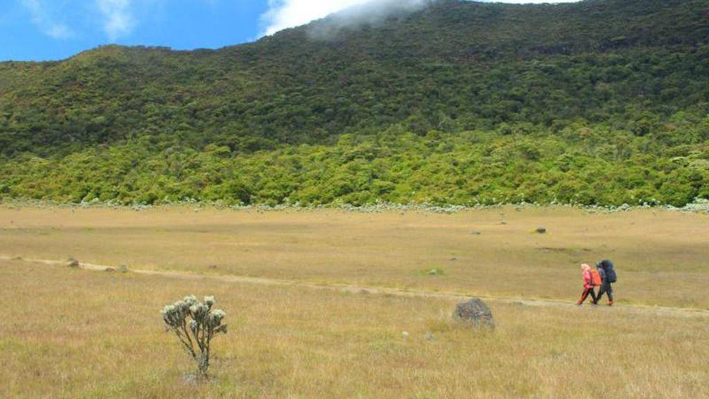 2 Pria Bugil di Alun-alun Suryakencana Gunung Gede, Tempat Sakral
